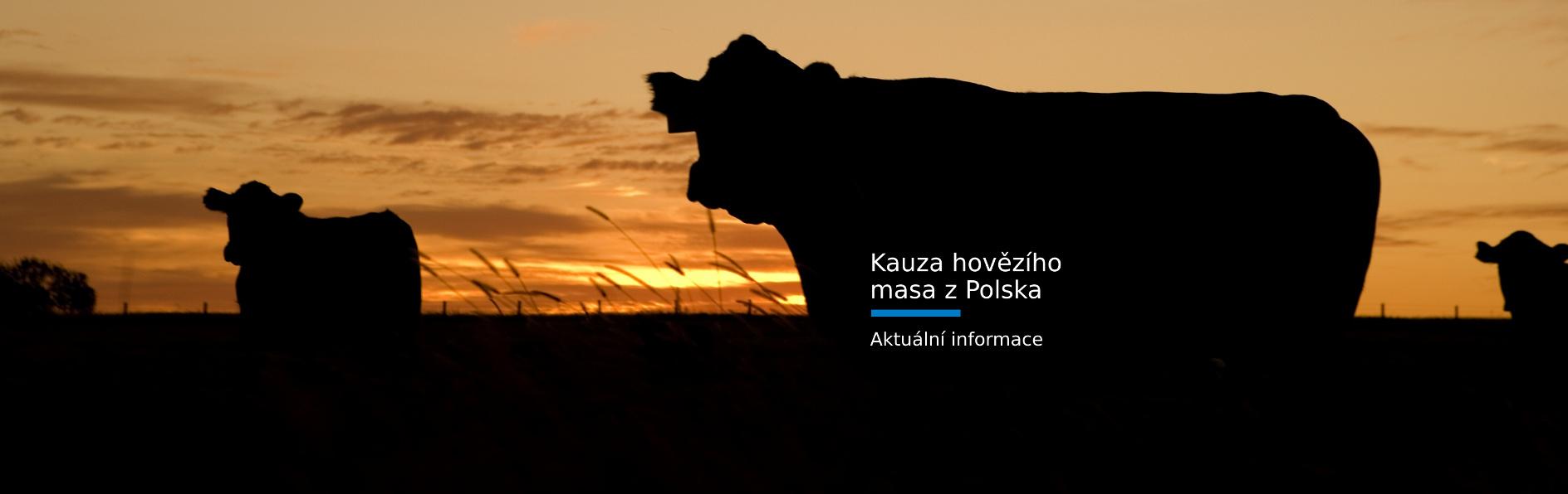 slide-kauza-hovezi-maso-2019