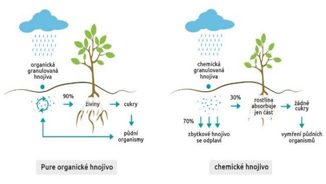 Schématické znázornění chování organických a chemických hnojiv v půdě