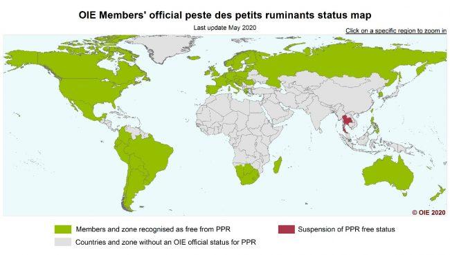 Mapa přehledu zemí prostých moru malých přežvýkavců